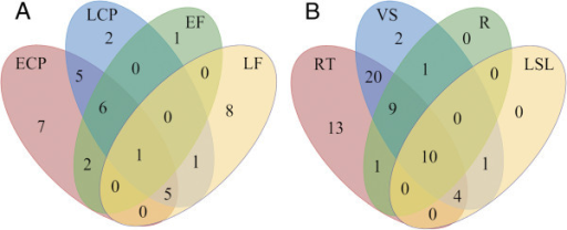 LuPME transcript expression in various tissues. Venn diagram showing the number of LuPMEs detected in phloem-fiber containing tissues (A) and in tissue systems (B) ECP: early cortical peels. LCP: late cortical peels. EF: early fibers. LF: late fibers. RT: reproductive tissues. VS: Vascular tissues at shoot. R: Root . LSL: Leaves and senescent leaves.