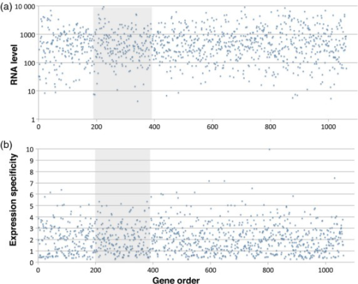 Gene expression level and developmental specificity are independent of LR-PC region residency in barley.Expression parameters for barley genes (Y axes) are plotted against their linear order (X axes) on barley chromosome 1H. The continuous LR-PCH is shaded grey.(a) Average RNA levels (arbitrary units), taken across 15 tissue types and developmental stages (Druka et al., 2006).(b) Developmental and/or tissue specificity quotients (= data from (a) divided by their corresponding standard deviations).