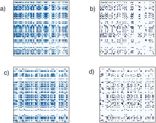 DPNet matrices.(a) Connectivity heat map for sample NC patient DPNet matrix. Note that it is not symmetric, as the connections are directed and has horizontal bands that reflect nodes that might be infected in the early period. (b) Matrix representation of thresholded DPNet network for NC patient. (c) Connectivity heat map for sample AD patient DPNet matrix. (d) Matrix representation of thresholded DPNet network for NC patient.