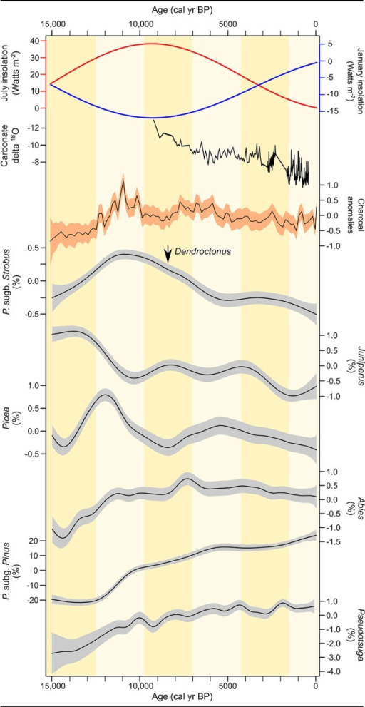 Environmental and conifer history in the Greater Yellowstone region over the last 15,000 years, including trends in January (blue) and July (red) insolation anomalies [44], snowpack dynamics inferred from δ18O variations at Crevice Lake [19] (note that the y-axis is reversed), fire activity (CHAR) and pollen abundance (%), and the first recorded presence of mountain pine beetle (Dendroctonus spp.) [46].Carbonate δ18O variations at Crevice Lake are interpreted as changes in spring snowmelt that affect the isotopic composition of the Yellowstone River. Low (more negative) δ18O values correspond with more humid winters [19]. Pollen and charcoal regional trends are estimated by GAMs applied to the charcoal influx pollen percent and data. Standard errors are shown in gray.