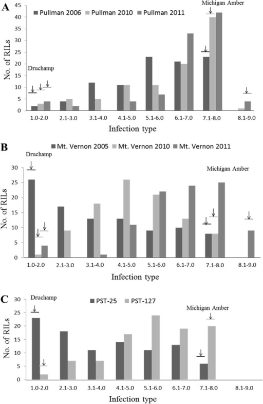 Frequency distributions of mean infection type (IT) values in the Druchamp × Michigan Amber derived recombinant inbred line (RIL) population tested with Puccinia striiformis f. sp. tritici in various environments.IT distribution of: (A) Pullman, WA in 2006, 2010 and 2011; (B) Mt. Vernon, WA in 2005, 2010 and 2011; and (C) greenhouse with races PST-25 and PST-127.