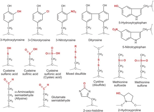 Structures of oxidized residues most commonly detected and studied by mass spectrometry. In mixed disulfides, R can be cysteine or glutathione (glutathionylation).
