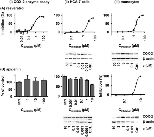 a radiochemical assay for cox enzymes