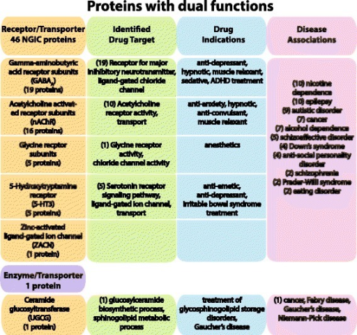 Proteins identified in the Dual functions class. The figure shows the 47 proteins identified as having specific dual functions. All of the neurotransmitter gated ion channel (NGIC) proteins are presented here, which include 46 members that are characterized by being a transporter and having a TC number (1.A.-.-.-; alpha-type channel) as well as being identified as a receptor. The NGIC are divided into their five different protein families, and the number of proteins identified as drug targets and the drug indications are presented. In addition, one protein is determined to be both an enzyme and transporter and the information is presented in the bottom row of the figure. The drug target and drug indications were identified through an updated dataset of all current targeted and potential proteins and genes involved in drug studies or experimentation. The gene-disease associations for all NGIC proteins are also displayed. Three different resources were used to identify gene-disease associations: the Online Mendelian Inheritance in Man (OMIM) database; the Functional Disease Ontology (FunDO) resource; and the Jensen Lab Diseases database (see Methods for details). The number in parenthesis represents the number of proteins that have been identified