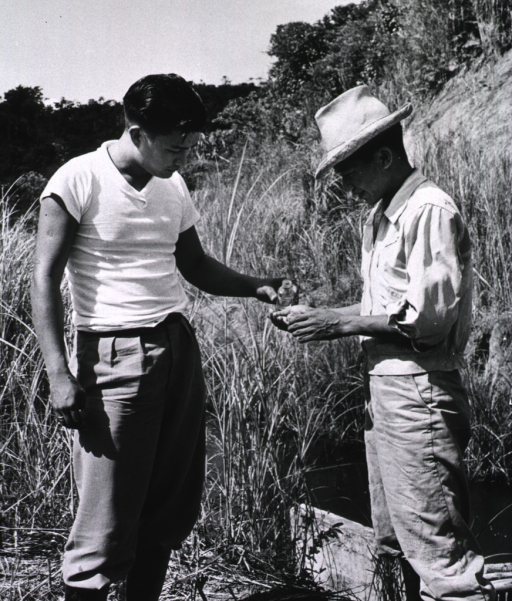 <p>Two field workers are rinsing their hands; a small stream is directly behind them.</p>