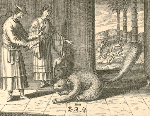 <p>Image of a couple housebreaking or taming an oversize squirrel with a collar around its neck. &quot;Feki&quot; is inscribed below the animal, followed by corrupted Chinese characters for song shu, i.e. &quot;squirrel&quot;. Monkey beside lady observes the training. Outside, a hunter with four dogs and horn and club in hand, chase a deer. Image from p. 262 of Kircher's La Chine.</p>