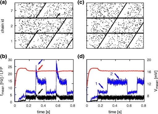 The effect of synfire chain switching realized by structured cross-inhibition on collective signals. (a) Spiking activity of a reduced network with synfire chain competition, connected as 1→2,7 and 2,7→1. Activity of 10% of the neurons is shown. (b) Firing rate (black), average membrane potential (red) and approximated LFP (blue; arbitrary units) calculated from activity in the reduced network. Arrows indicate signatures of synfire chain switching in the collective signals. (c, d) As in (a, b) but without synfire chain competition: connected as 1→2→7→1. Arrows indicate regimes in which cross-inhibition is absent (1) and present (2)