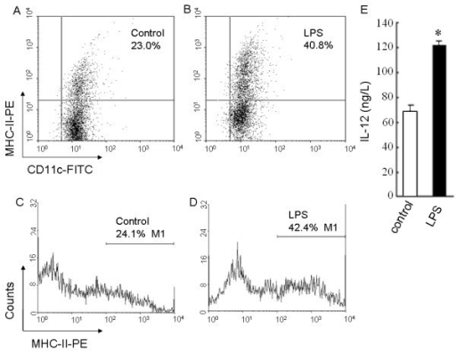 MHC-II expression and IL-12 production of immature and mature BMDCs. (A-D) Flow cytometry was used to detect CD11c and MHC-II molecule expression on the surface of the immature BMDCs treated with 10.0 μg/L of rmGM-CSF plus 10.0 μg/L of rmIL-4 as the control (A, C) or the mature BMDCs stimulated with 1.0 mg/L of LPS (B, D), which was displayed respectively by the scattered plots (A, B) and the single parameter diagrams (C, D). (E) The level of IL-12 secreted by the immature BMDCs or the mature BMDCs was measured by ELISA. *P < 0.05, compared with the control.