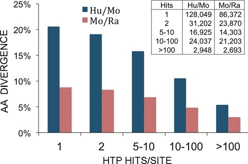 Comparison of the % of amino acid divergence (Y axis) of phosphorylation sites (pSer/pThr/pTyr) with varying numbers of associated hits (X axis). Ser, Thr or Tyr variants were excluded from counting. A total of 203,161 human/mouse and 148,441 mouse/rat phosphorylation sites were compared. The inset indicates the number of phosphosites included in each comparison. Blue, fraction of amino acid substitutions between human phosphosites and orthologous mouse residues; red, fraction of amino acid substitutions between mouse phosphosites and orthologous rat residues.