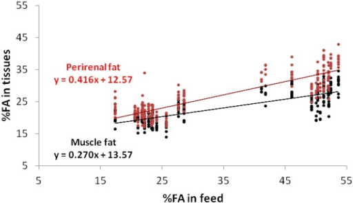 Regressions of the linoleic acid (C18:2 n-6) contents in the muscle fat and perirenal fat, according to their contents in the feed.