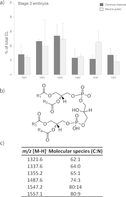 (a) Relative abundance of the [M-H]− ions of the different molecular species of cardiolipin (CL) present in embryos of Carcinus maenas and Necora puber at stage 3. (b) General structure of CL. (c) Major molecular species of CL identified by liquid chromatography – mass spectrometry in negative-ion mode in the embryos of C. maenas and N. puber. Error bars represent standard deviation of three independent samples.