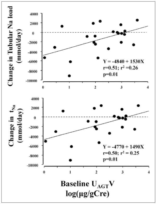 The effect of intrarenal renin-angiotensin system (RAS) activity during angiotensin receptor blocker (ARB) treatment on the changes in glomerulotubular sodium (Na) balance by additional treatment with hydrochlorothiazide. In patients, whose intra-renal RAS activity was suppressed during ARB therapy, greater decrease of changes in tubular Na load and tubular Na reabsorption was shown. Intra-renal RAS activity was indicated by daily urinary angiotensinogen excretion. AGT: angiotensinogen; tNa: tubular Na reabsorption (mmol/day); UAGTV: urinary angiotensinogen excretion (log(μg/g Cre)).