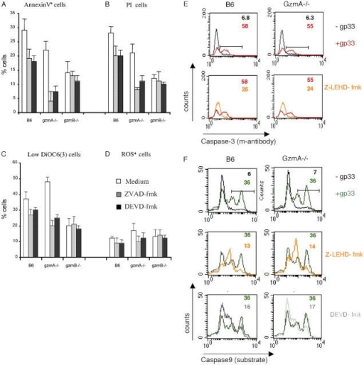 Caspase inhibitors completely block PS exposure induced by gzmA-deficient CTL. (A–F) EL4.F15 cells were incubated with ex vivo virus-specific CD8+ cells (MACS selected, ≥95% CD8+ cells) from B6, gzmA−/−, or gzmB−/− mice for 2 h at a 10:1 effector/target ratio in the presence or absence of the LCMV peptide gp33. (A–D) CML cultures were incubated in the presence or absence of 100 μM of the pan caspase inhibitor Z-VAD-fmk or the caspase 3 inhibitor Z-DEVD-fmk. Subsequently, PS exposure on plasma membrane (annexin-V-FITC; A) and PI uptake (B) and, in parallel, ΔΨm loss (DiOC6(3) staining; C) and ROS generation (2-HE; D) were analyzed by three-color flow cytometry in the cell population negative for CD8 expression (target cells). Results are the mean of three independent experiments and are given as the difference of percentages in the presence or absence of gp33 ± SD. (E and F) Inhibition of caspase 3 or 9 activity reduces, respectively, caspase 9 or 3 activation induced by B6 and gzmA−/− CTL. Caspase 3 activity was analyzed using an FITC-labeled mAb against the active form of the enzyme (E), whereas caspase 9 activity was analyzed by using the specific fluorescent substrate FAM-LEHD-fmk (F) by two-color flow cytometry in the cell population negative for CD8 expression (target cells). CMLs were also developed in the presence of the caspase 3 (100 μM Z-DEVD-fmk; F, bottom, gray) or caspase 9 (100 μM Z-LEHD-fmk; E, bottom, orange; and F, middle, orange) inhibitors. Numbers correspond to the percentage of cells positive for the labeling in each case, indicated by the horizontal bars shown in the top panels.