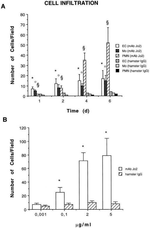 Quantitative and qualitative evaluation of cells infiltrating  Matrigel. (A) Time course studies on infiltration induced by 5 μg/ml  anti-Fas mAb Jo2 or control hamster IgG. Endothelial cells (EC) were  counted as vWF-positive cells; monocytes (Mo) were counted as MAC-1–esterase-positive cells; and PMN were counted in section stained by  hematoxylin and eosin. (B) Dose-dependent studies on Matrigel infiltration observed 6 d after stimulation with anti-Fas mAb Jo2 or control hamster IgG. The results were expressed as a mean ± SE of cells/field (×400).  ANOVA with Dunnett multi-comparison test was performed: control  hamster IgG vs. anti-Fas mAb Jo2: (A) EC* P <0.05; Mo• P <0.05;  PMN§ P <0.05. (B) total cell count *P <0.05.