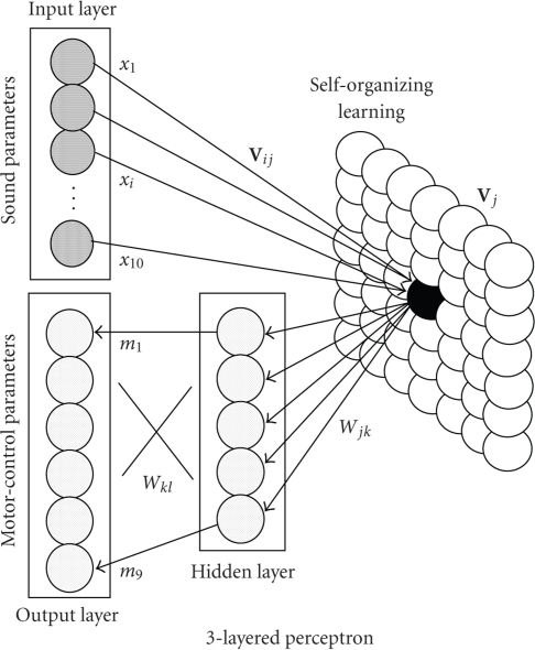 Structure of self-organizing neural network.
