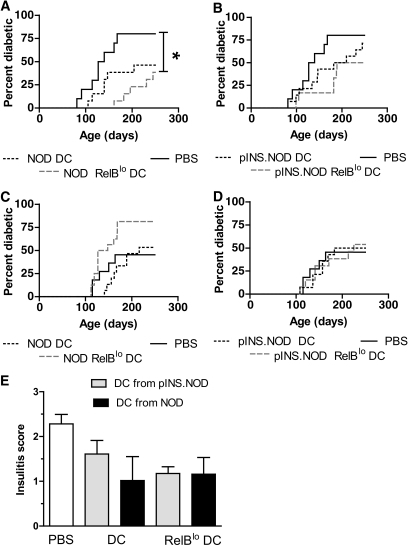 RelBlo tolerizing DCs inhibit diabetes when administered to young, but not insulitic, NOD mice. RelBlo DCs were generated from the bone marrow of NOD or pINS.NOD transgenic mice in the presence of GM-CSF, IL-4, and Bay11-7082. Control DCs were generated from the same mice in the presence of cytokines and the absence of Bay11-7082. Twenty-eight-day-old (A and B) or 100-day-old female NOD (C and D) mice were injected subcutaneously with 5 × 105 DCs. Mice were screened weekly for diabetes until 250 days of age. Diabetes incidence curves are shown for groups each containing 12 mice. *P < 0.05 (Kaplan-Meier survival analysis with Bonferroni correction for multiple groups). Insulitis was assessed at 12 weeks (E) in four female NOD mice per group treated at 4 weeks of age with DCs as shown. Data represent means ± SD.