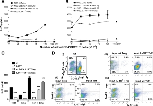 IL-17 is produced by Teff and reprogrammed Tregs in an IL-1β–dependent manner during insulitis. IL-17 was assayed at 5 (A) or 10–14 weeks (B) in supernatants from the T-cell proliferation assay by ELISA from NOD.Lt cells with or without anti–IL-1 or anti–IL-17 mAb (10 μg/ml) or from NOD.IL-1R1−/− cells. C: CD4+CD25− Teff and CD4+CD25+ Treg purified from 6-week CD45.1 NOD.Lt, CD45.2.NOD, and CD45.1 NOD.IL-1R1−/− mice were stimulated with DCs and anti-CD3. After 72 h, IL-17 was measured in supernatants. ***P < 0.0001 (one-way ANOVA). D: Cells from the same experiment were restimulated with PMA in the presence of brefeldin A and stained for CD4, CD45.2, FoxP3, and IL-17. Cells are gated on CD4 and the relevant congenic marker to analyze Teff and Treg FoxP3 and IL-17 expression individually.