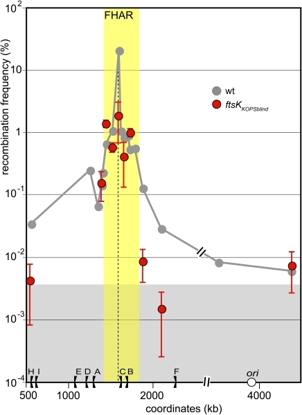 KOPS recognition is not required for preferential interaction of FtsK with the FtsK high activity region.Same legend as Figure 2 and 3. Grey curve: ftsKwt, redrawn from figure 2; red dots ftsKKOPSblind. The yellow zone indicates the FtsK high activity region and the grey zone the FtsK-independent recombination background (see Figure 2).