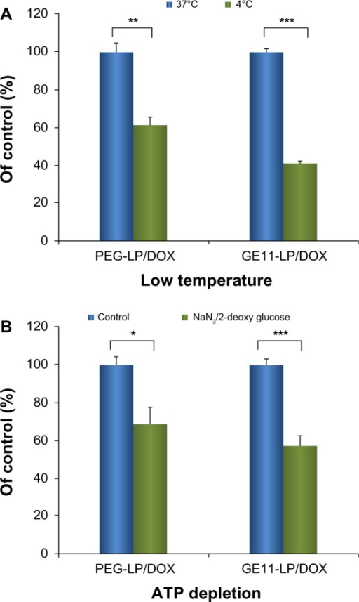 Effects of low temperature (A) and ATP depletion (B) on cellular uptake of liposomes.Notes: The low temperature experiment was performed by preincubating A549 cells at 4°C for 30 minutes. The ATP depletion experiment was performed by preincubating A549 cells with sodium azide (10 mM) and 2-deoxy-d-glucose (6.5 mM) at 37°C for one hour. The data are shown as the mean ± standard deviation (n=3). *P<0.05; **P<0.01; ***P<0.001.Abbreviations: DOX, doxorubicin; PEG, polyethylene glycol; LP, liposomes; NS, not statistically significant.
