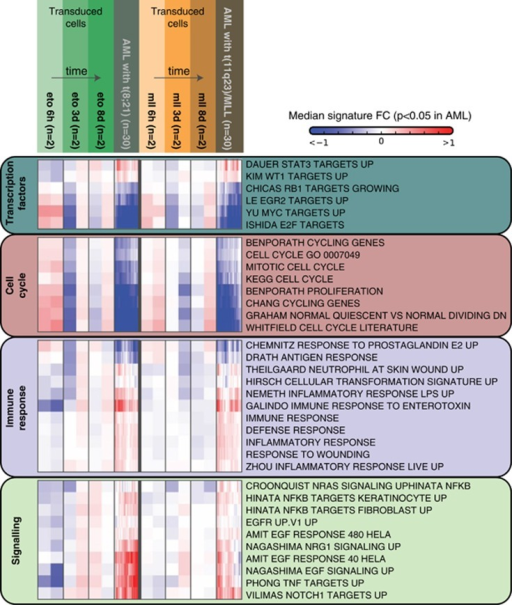 Pathway-centric comparison of transcriptional changes in AML blasts and CD34+ cells transduced with the same oncogenes. Median gene-expression fold change of selected MsigDB gene signatures that are significantly (P<1e−5) enriched among genes found to be deregulated in AML blasts samples. Fold change is computed relative to controls for transduced cells, and relative to the closest normal counterpart for AMLs blasts.