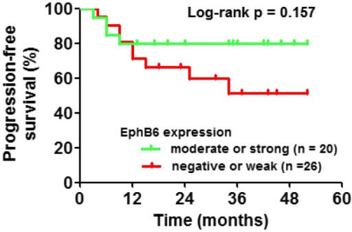 Kaplan-Meier plot showing time to biochemical progression-free survival of prostate cancer patients in different EphB6 expression groups. Eph, erythropoietin-producing hepatocyte.