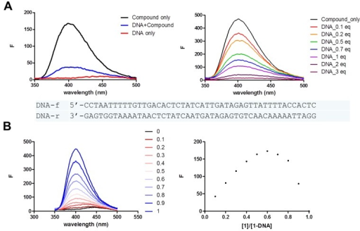(A) Fluorescence spectra of compound (1) (2 μM) upon addition of DNA duplex; (B) The Job plot obtained from the fluorescence response upon DNA binding.