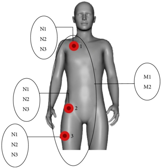 Node placement in different body parts.
