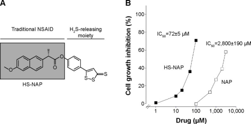 Inhibitory effect of HS-NAP on HT-29 colon cancer cell growth.Notes: (A) The structural components of HS-NAP. (B) Cells were incubated with increasing concentrations of HS-NAP or NAP for 24 hours. Cell viability was determined by MTT assay. The results represent the mean ± standard error of the mean of at least three different experiments with duplicate plates.Abbreviations: HS-NAP, H2S-releasing naproxen; NSAID, nonsteroidal anti-inflammatory drug; NAP, naproxen; IC50, half maximal inhibitory concentration.