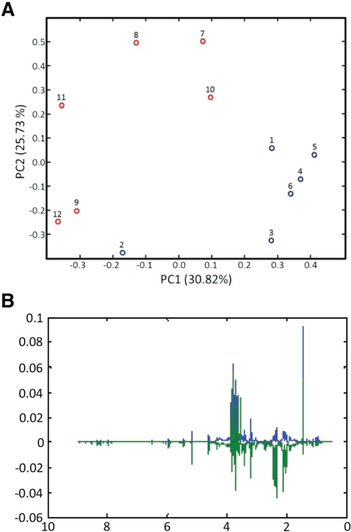 PCA results for the 1H NMR spectra of strain pnit-6_1.5 cultured on Gln (samples 1–6; blue) and nitrate (samples 7–12; red). (A) PCA scores. Although the samples within a treatment are not tightly clustered, clear segregation of the samples by treatments is observed in the scores plot. (B) PCA loadings. The loadings plot highlights the 1H NMR resonances that make the greatest contributions to sample variance in this data set. The loadings for PC1 are shown in blue, and those for PC2 are shown in green.