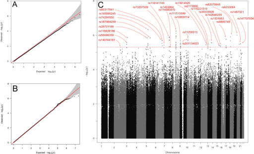Results of GWAS Analysis using EMMAX.(A) QQ plot: There is genome-wide deflation(λ = 0.982SE = 1.74e−05) of thetest statistic when the phenotype is corrected for kinship only. (B)QQ plot: Phenotype correction for age, gender and pairwise kinship removedany deviation from the  expectation of the genome-wide test statistic(λ = 1.001,SE = 8.7e−7).(C) Manhattan plot showing index SNPs withPEMMAX < 5 × 10−6.