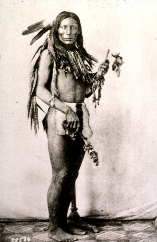 <p>Full length, standing, right pose, full face; wearing native dress.</p>