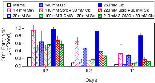 Effects of glucose analogs on seed storage lipid breakdown. Eicosenoic (20:1) fatty acid levels were measured in seeds/seedlings harvested from the indicated media at different times after the start of imbibition. Results presented are means ± SD (n = 3). Glc, glucose; Man, mannose; 3-OMG, 3-O-methylglucose; Sorb, sorbitol. This experiment was repeated, with similar results.