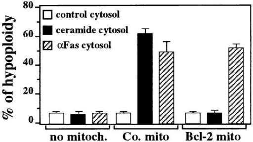 Effect of Bcl-2 on  the AIF release triggered by cytosols from ceramide- or Fas-stimulated cells. Cytosols (107  cells/100 μl CFS buffer) were  prepared from washed (three  times) cells which were either  left untreated (control) or treated  with C2 ceramide (50 μM) or anti-Fas during 30 min. These cytosols (5  μl) were added to 25 μl CFS buffer only or CFS buffer containing mitochondria (50 μg protein) from control CEM-C7-H2 cells (Co. mito) or  from Bcl-2–transfected cells (Bcl-2 mito), followed by an incubation step  of 30 min at 37°C. The supernatants of these cultures (14,000 g, 10 min,  4°C) were added to purified HeLa nuclei (3 × 104 nuclei in 10 μl CFS  buffer). After 90 min of incubation at 37°C, nuclei were stained with PI  and analyzed for the frequency of hypoploid events. One experiment out  of two yielding similar results is shown. Independent control experiments  indicate that C2 ceramide itself does not induce PT in isolated mitochondria at a dose up to 50 μM (not shown).