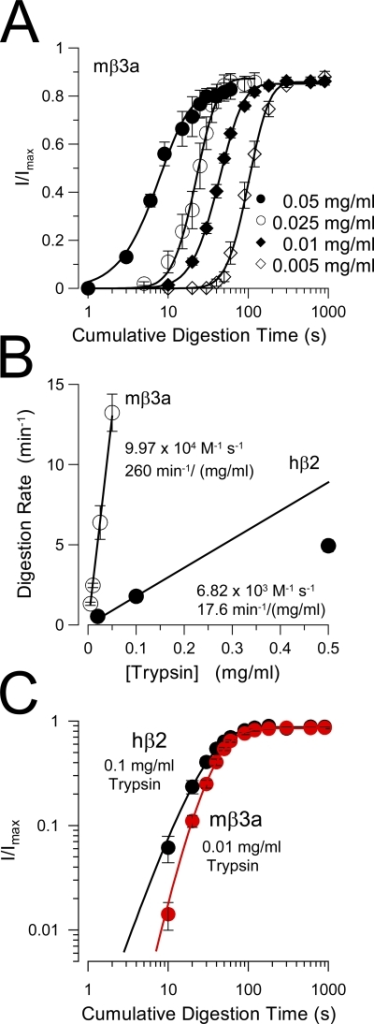 Comparison of removal of inactivation mediated by hβ2 and mβ3a. (A) The removal of mβ3a-mediated inactivation is plotted for four different trypsin concentrations. Fitted time constants of digestion were 5.83 ± 1.2 s (0.05 mg/ml), 10.5 ± 1.42 s (0.025 mg/ml), 23.72 ± 1.41 s (0.01 mg/ml), and 44.22 ± 3.74 s (0.005 mg/ml). (B) The effective digestion rate (min−1) is plotted as a function of trypsin concentration for both mβ3a and hβ2 (from Zhang et al., 2006). The line through the mβ3a points corresponds to a linear fit with a slope of 260 min−1/mg/ml, which assumes a molecular weight of 24 kD for trypsin corresponds to 9.97 × 104 M−1 s−1. For β2, the line corresponds to the slope through the two lowest trypsin concentrations, yielding a maximal effective rate of 6.82 × 103 M−1 s−1. (C) A log-log plot of the digestion time course for hβ2 (black circles) and mβ3a (red circles) compares the slope of the digestion process. For β2, n = 2.21 ± 0.23; for β3a, n = 3.62 ± 0.39. Note that in A, except for the time course observed with 0.05 mg/ml, the steeper slope of β3a digestion is independent of trypsin concentration. Similarly, the slope of β2 digestion is independent of trypsin concentration (not depicted).
