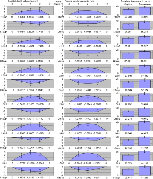 Depth profiles (exact depth per point printed on the x-axis for clarity), endplate sizes and disc contour from the sagittal and frontal plane (all values in mm). Standard deviations depicted by error bars