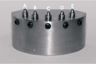 Metal matrix and disposition of the abutment analogs.