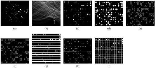 Steps of the proposed method: (a) input microarray image, (b) result of the Radon transform (c) counter-rotated input image, (d) binarized image, (e) detected spots, (f) selected spots, (g) distance estimation between rows of spots, (h) determination of grid line and (i) gridded microarray image.