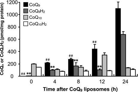 Changes in contents of CoQn and CoQnH2 in HepG2 cells after exposure to CoQ9 liposomes. HepG2 cells were exposed to CoQ9 liposomes (10 µM) and harvested after 4, 8, 12, or 24 h. Intracellular CoQ9, CoQ9H2, CoQ10, and CoQ10H2 were measured by HPLC as described in Materials and Methods. Data points represent the means ± SE (n = 3). **p<0.01 vs CoQ9H2 at 24 h, ##p<0.01 vs CoQ9 at 24 h.