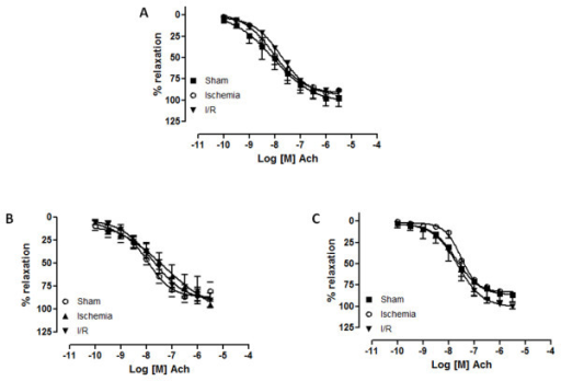 Concentration-response curves for acetylcholine (10-10 M to 3.10-5 M) in canine celiac trunk (a), superior mesenteric (b) and renal arteries (c) from sham, ischemia and ischemia/reperfusion (I/R) groups. (n = 9). Log [M] = logarithm of molar concentration.