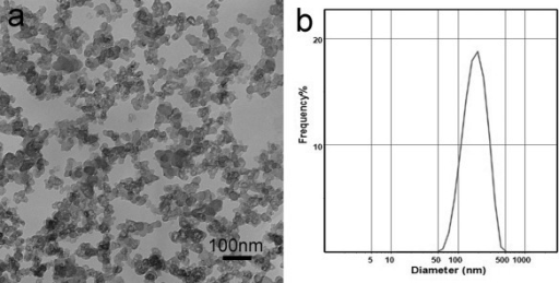 Characterization of the typical sample. (a) TEM image, (b) size distributions.