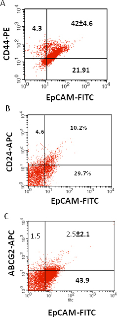 Investigation of the co-expression of epithelial cell adhesion molecule (EpCAM) with cluster determinant (CD)44, CD24 and ATP binding cassette protein G2 (ABCG2) markers in retinoblastoma (RB) tumor 3. A: Scatter plot shows the co-expression of EpCAM with Cluster determinant-44 (CD44). B: Scatter plot shows the co-expression of EpCAM with CD24. C: Scatter plot shows the co-expression of EpCAM with ABCG2. EpCAM-fluorescein isothiocyanate (FITC) represents EpCAM positive cells identified using FITC labeled antibody. CD44-PE represents CD44 positive cells identified using phycoerythrin labeled antibody. CD24-APC represents CD24 positive cells identified using allophycocyanin labeled antibody. ABCG2-APC represents ABCG2 positive cells identified using allophycocyanin labeled antibody.