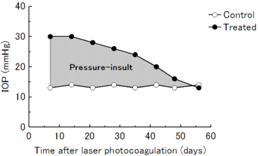 Definition of pressure-insult for a surrogate value. Based on the line plot of time (x) and IOP (y) in laser-treated and control eyes, the area surrounded by both lines (∫ΔIOP(y) dx) was calculated as a surrogate value of the pressure-insult.