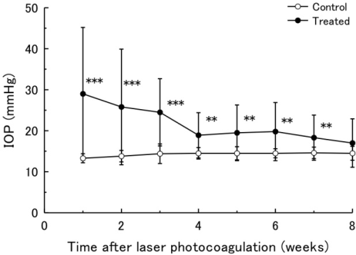Intraocular pressure of ocular hypertension model eyes. Time courses of IOP in the laser-treated eyes and the contralateral control eyes for 8 weeks are indicated. n=20. Data are mean±standard deviation (SD). The IOP of the treated eyes was significantly higher in each time point compared with the IOP of the sham-operated contralateral eyes by a paired t test. (**p<0.01, *** p<0.001).