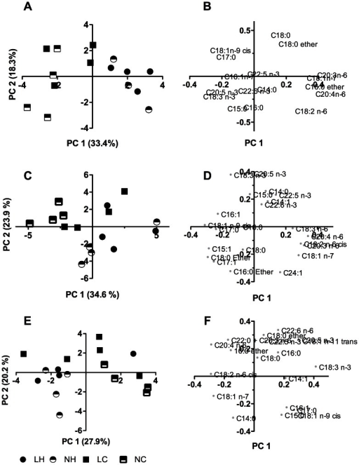 Principal component analysis score and loading plots for muscle phospholipid components of 2-years old sheep.Panel A and B, biceps femoris; panel C and D, longissimus dorsi; panel E and F, ventriculus sinister cordis. Panels A, C, and E are score plots; panels B, D, and F are loading plots. The first two principle components (PC) are plotted. NC, NH, LC, LH refer to experimental treatment groups. N and L refer to the prenatal nutrition offered to the twin-pregnant dams and fulfilling 100% and 50%, respectively, of daily requirements for energy and protein. C and H refer to a moderate or high-carbohydrate-high-fat diet, respectively, fed during the first 6 months of postnatal life. Legends for all panels are shown at the bottom of panel E.