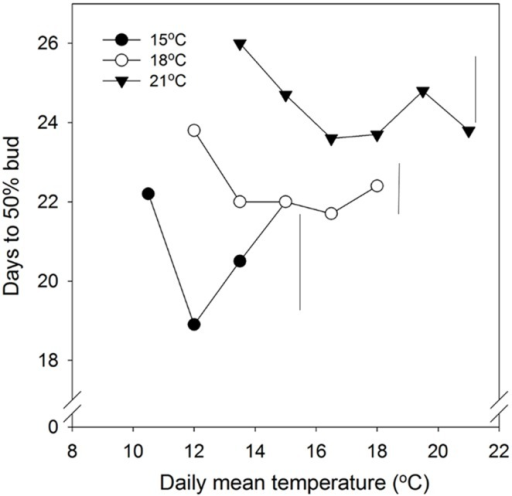 Time to 50% bud burst in seedlings of Norway spruce as affected by temperature during short day treatment. Results are means of all three provenances, and are plotted against the daily mean temperature for the 3 day temperature treatments (15, 18, and 21°C, which were combined with NT of 6, 9, 12, 15, 18, and 21°C, i.e., up to 15, 18, and 21°C for the DT 15, 18, and 21°C, respectively). Seedlings were not chilled before forcing (18°C, 24 h photoperiod). Vertical bars give the critical difference (P = 0.05) for night temperatures (NT) within the 3 day temperatures.