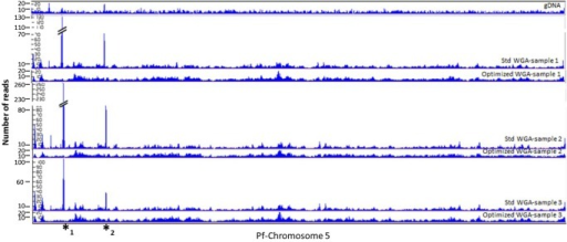 LookSeq analysis of coverage uniformity. Plasmodium falciparum 3D7 genomic DNA amplified with Repli_g following standard or optimized procedures. gDNA (top panel) shows bulk genomic DNA sequenced without amplification. All samples amplified using the standard (Std WGA) procedure show regions of amplification bias (marked by *1 and *2, see Supplementary Table S1), whereas their corresponding counterparts amplified following the optimized procedure (Optimized WGA) show less bias and relatively uniform coverage. Different amounts of input DNA were used for each sample set (Sample 1, 0.1 ng; Sample 2, 0.5 ng; Sample 3, 1 ng).