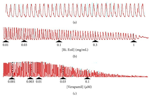 Typical tracing of the (a) normal contractions and relaxation, (b) concentration-dependent spasmolytic effect of essential oil isolated from Rosa indica (Ri. Eoil), and (c) verapamil on spontaneously contracted isolated rabbit jejunum preparations.