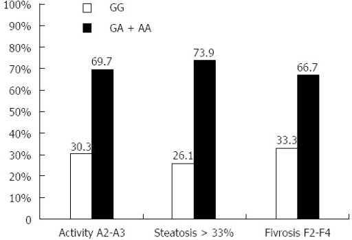 Effect of different tumor necrosis factor α genotypes on liver pathological parameters (inflammation, steatosis and fibrosis). The effect of high expressing TNFα genotypes (GA + AA) were statistically compared with the low expressing TNFα genotype (GG), and the results showed strong effect of (GA + AA) genotypes on liver inflammation (P = 0.007), steatosis (P = 0.005) and fibrosis (P = 0.032). P ≤ 0.05 is considered significant while P ≤ 0.01 is highly significant. TNFα: Tumor necrosis factor alpha; HCV: Hepatitis C virus.