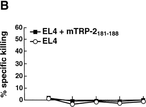 CTL response to TRP-2181–188 peptide in mice that were not immunized (A), or immunized with mTRP-2 (B) or hTRP-2 (C). C57BL/6 mice (2 or 3 per group) were immunized as described in the legend to Fig. 1. 7 d after the last immunization, draining lymph nodes were pooled and stimulated as described in Materials and Methods for 5 d and tested for cytotoxicity against EL-4 target cells, either pulsed with TRP-2 peptide or unpulsed. Results are representative of two experiments.