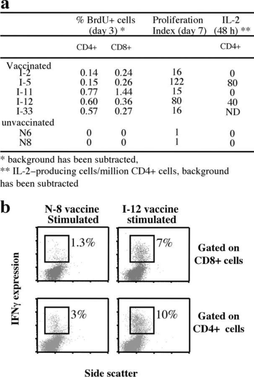 Vaccinia-specific CD4 and CD8 amplification leads to an increase in the frequency of effector–memory cells. (a) Percentage of BrdU+ cells in CD8 and CD4 T cells of five vaccinated individuals and two unvaccinated individuals after fresh PBMCs infected with either 1 pfu/cell vaccinia strain or medium alone were cultured for 3 d in the presence of BrdU (background subtracted). The number of IL-2–producing cells in the CD4 population was estimated by flow cytometric analysis at 48 h after antigenic stimulation (0–80 IL-2–producing cells/million CD4+ cells). (b) Representative flow cytometric analyses show IFN-γ production in vaccinia-specific T cells expanded for 7 d and restimulated on day 7 by monocytes infected with vaccinia for an additional 18 h at 1 pfu/cell (unvaccinated and long-term vaccinated individuals).